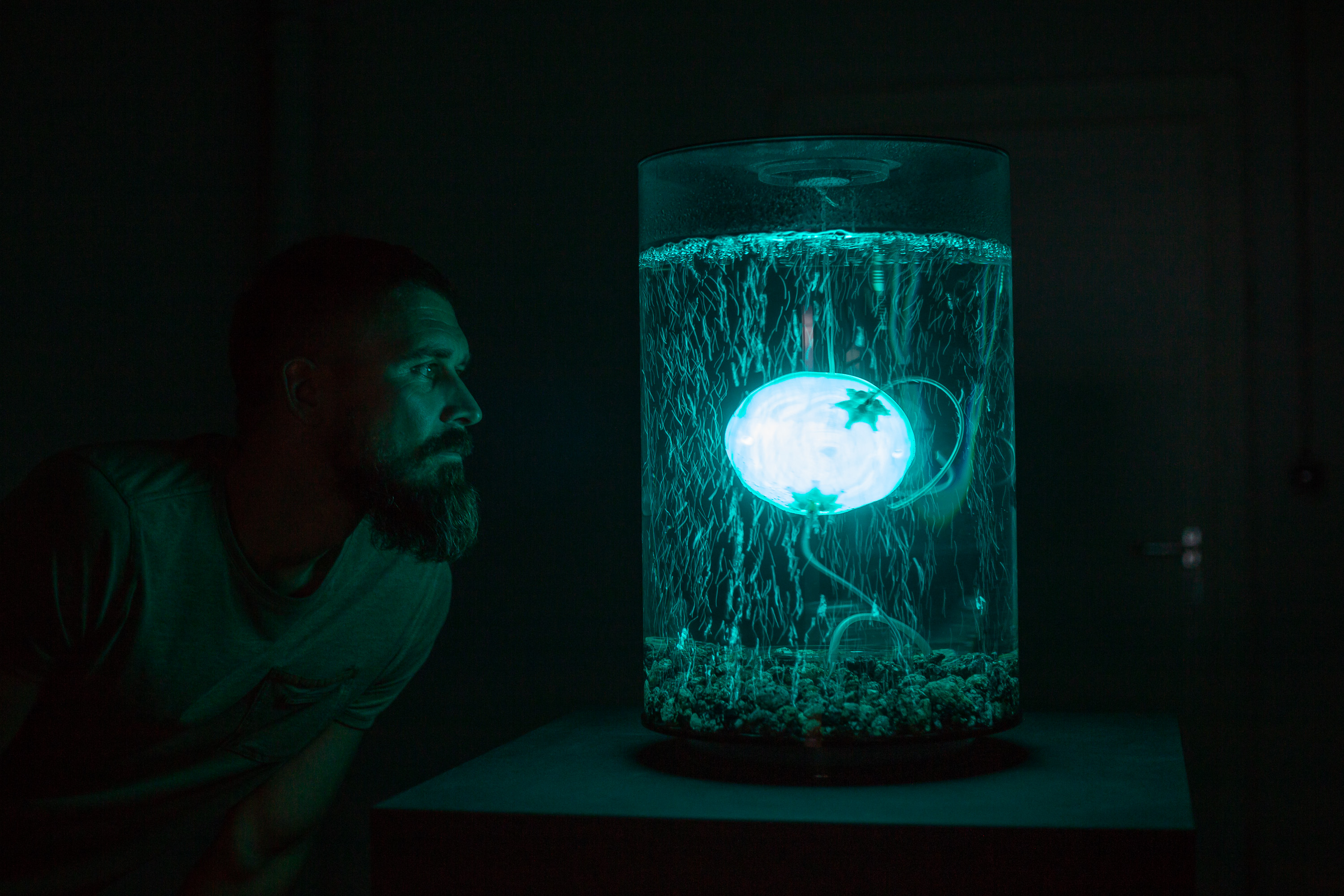 1_ArchaeaBot_by_Anna Dumitriu_and_Alex May_in collaboration_with_scientist_Amanda_Wilson_Imperial_College_Photo_credit_Vanessa Graf_Ars Electronica_2018.jpg