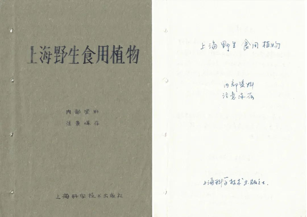 Zheng Bo, Survival Manual I (Hand-Copied 1961 %22Shanghai's Wild Edible Plants%22),2015-1.jpg