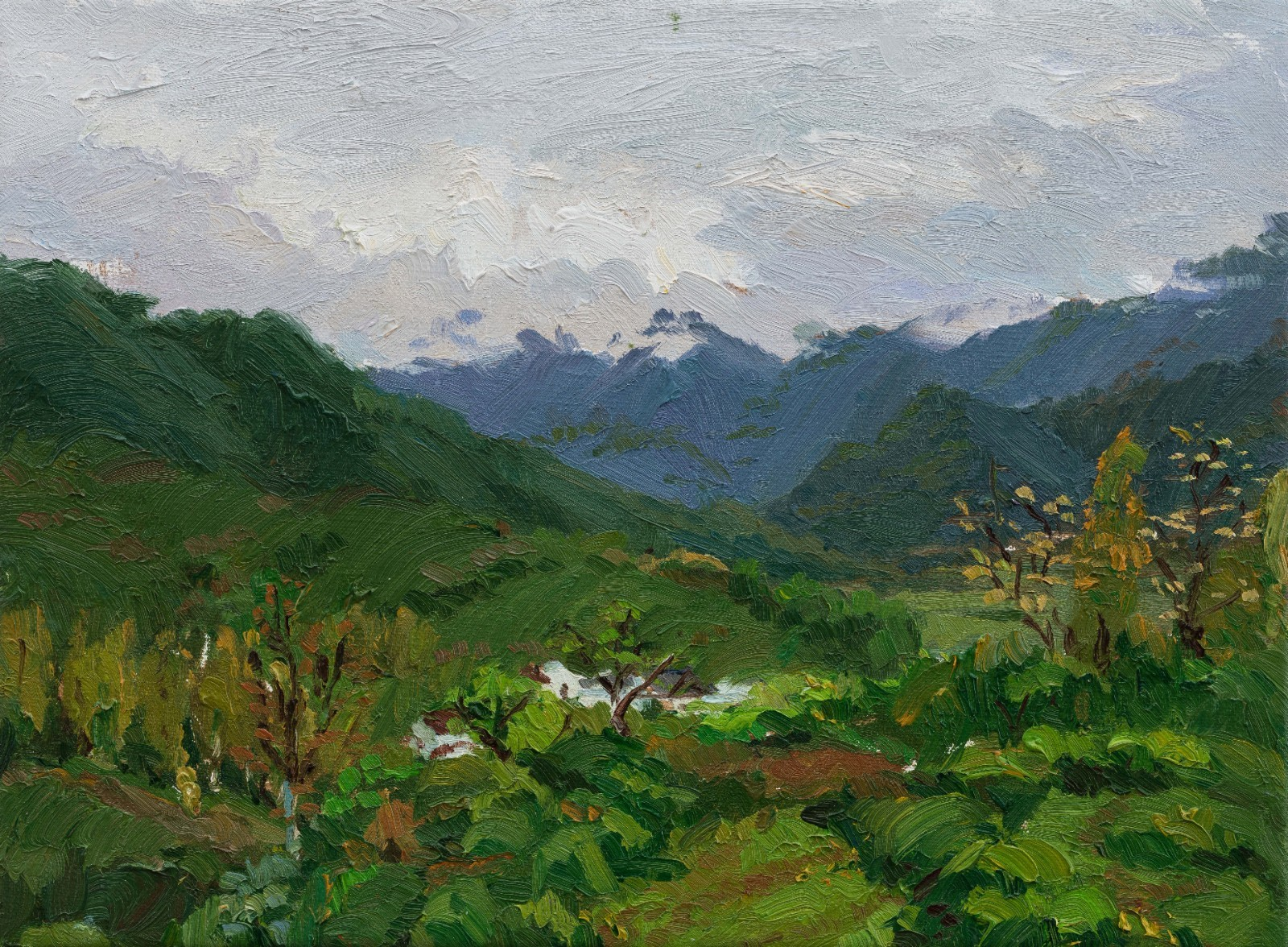 "39 Liang Zongyao ""Landscape"", 30×41cm, Oil on canvas, 2016, Instructor Zhang Lujiang.jpg"